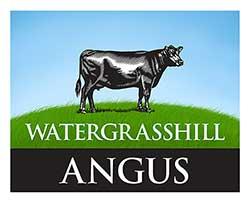 Watergrasshill Angus Logo